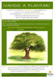 Plantación de bellotas (jueves, 3)