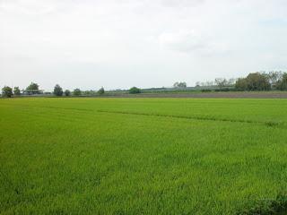 Jornada técnica agrícola (jueves, 14)