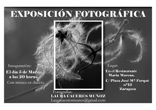 Exposición de Laura Cáceres en María Morena (del 5 de marzo al 30 de abril)