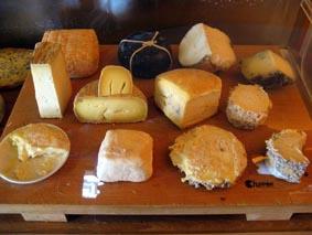 Cata de quesos (lunes, 11)