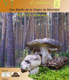 Jornadas Micológicas del Moncayo (27 y 28 abril)