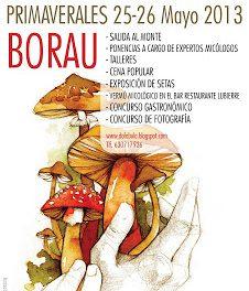 IV Jornadas de micología de primavera de Borau (días 25 y 26)