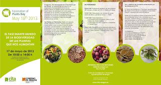Día Internacional de la Fascinación por las plantas (viernes, 17)
