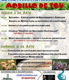 Jornadas de primavera Setas y plantas medicinales (11 y 12 de mayo)