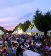 Festival Vino Somontano para celíacos (del 1 al 4 de agosto)