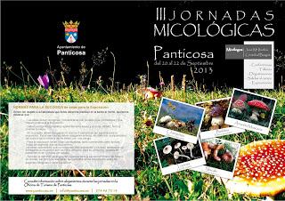 Jornadas micológicas (del 20 al 22)