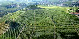 Cata de vinos italianos (viernes, 20)