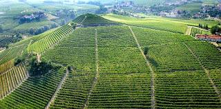 Cata de vinos italianos (viernes, 27)