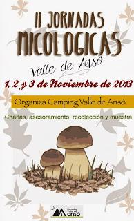 II Jornadas micológicas Valle de Ansó (del 1 al 3 de noviembre)