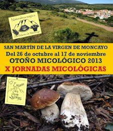 Jornadas micológicas (9 y 10 de noviembre)