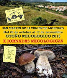 Jornadas micológicas (1 al 3 de noviembre)