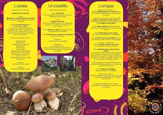Jornadas micológicas (del 27 de octubre al 17 de noviembre)