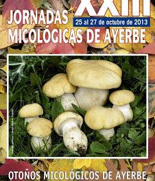 Jornadas micológicas (del 25 de octubre al 24 de noviembre)