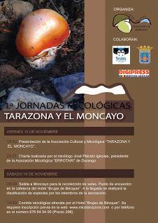 Jornadas micológicas (días 15 y 16)