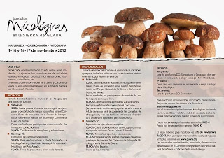 Jornadas micológicas (9-10 y 16-17 de noviembre)