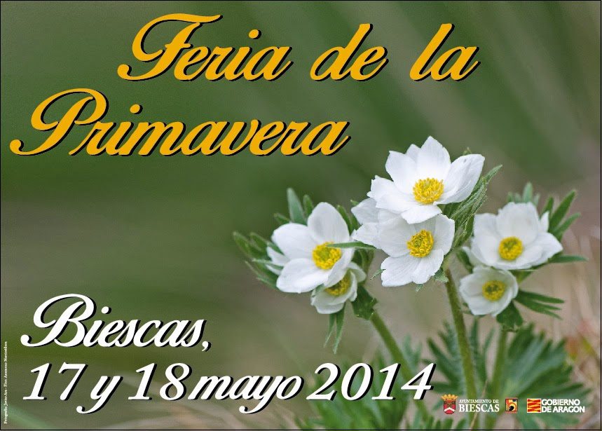 Feria de primavera de Biescas (Días 17 y 18)