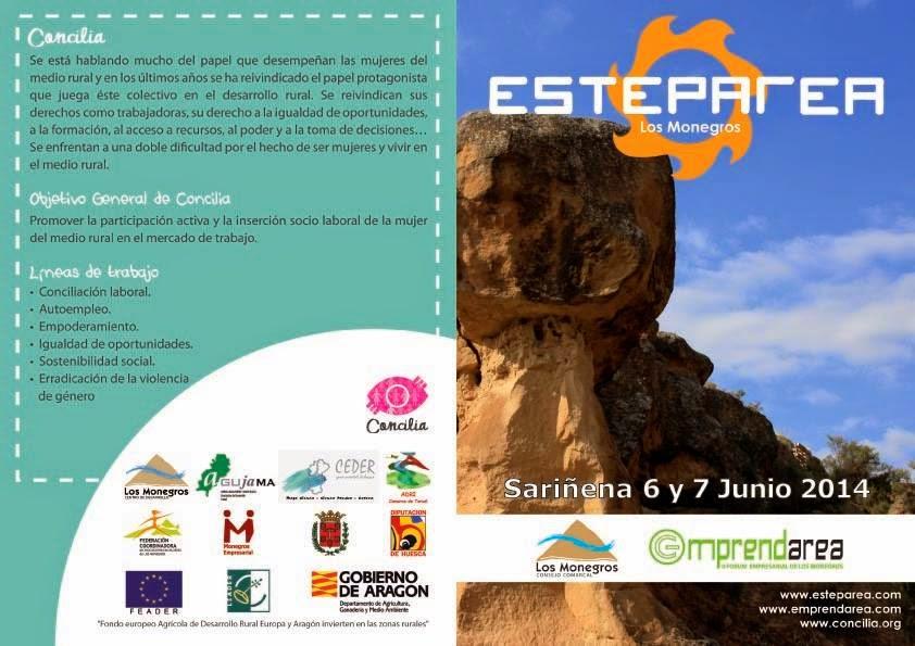 Esteparea 2014 (6-7 junio)