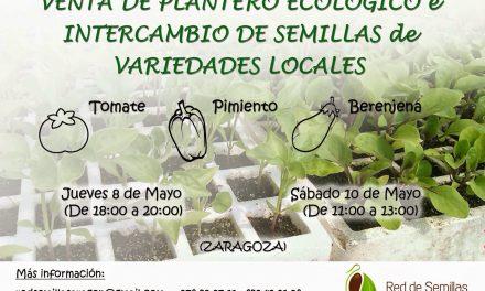 Venta de plantero ecológico e intercambio de semillas (8 y 10 de mayo)