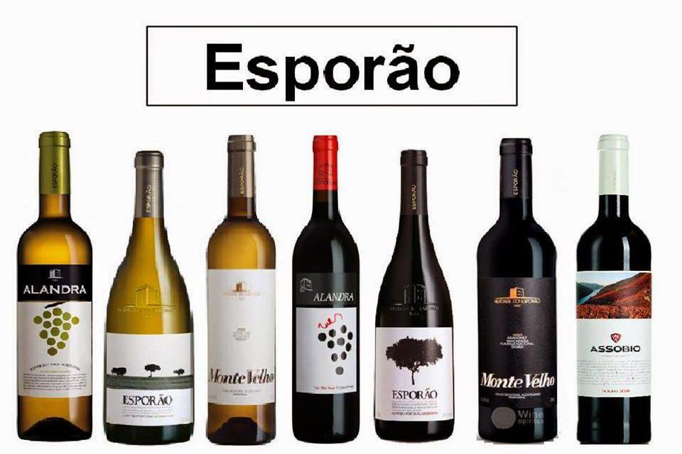Cata de vinos portugueses (viernes, 13)