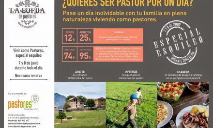 ¿Quieres ser pastor por un día? (sábado 7 y domingo 8)