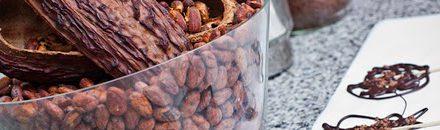 Chocotour durante el mes de junio (sábados 14 y 28)