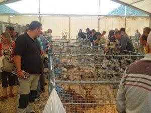 XX Feria de Cazataria (6 y 7 de septiembre)