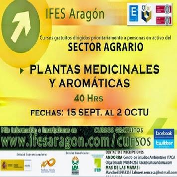 Curso gratuito sobre plantas medicinales y aromáticas (del 15 de septiembre al 2 de octubre)