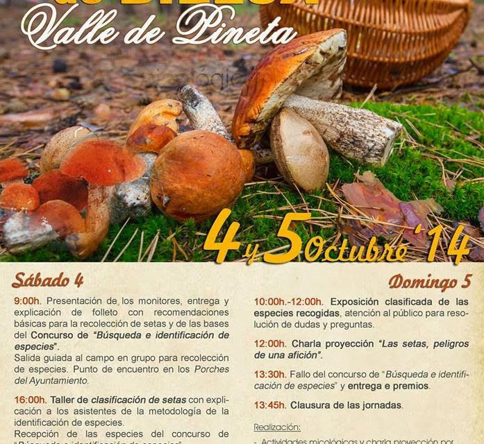 Jornadas Micológicas en Bielsa (4 y 5 de octubre)