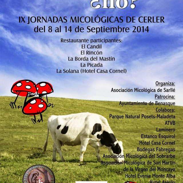 IX Jornadas micológicas de Cerler (del 8 al 14 de septiembre)