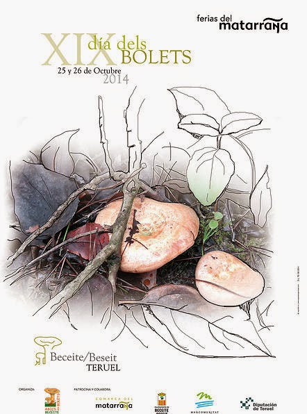 XIX Dia dels bolets y XVII Jornadas micológicas (25 y 26 de octubre)