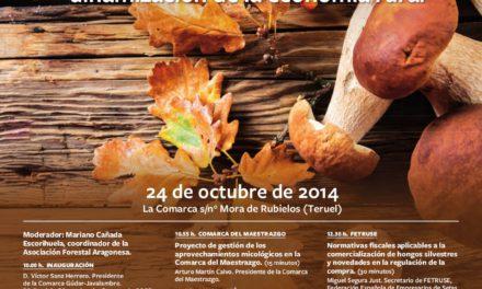 Jornada El recurso micológico, una oportunidad para la dinamización de la economía rural (viernes, 24)