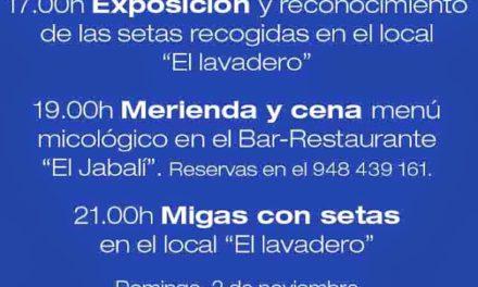 Jornadas micologicas Cinco Villas (1 y 2 de noviembre)