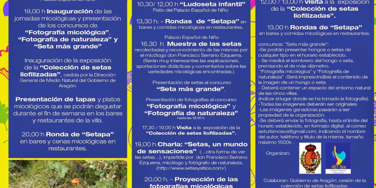 Jornadas micologicas Cinco Villas (del 7 al 9 de noviembre)