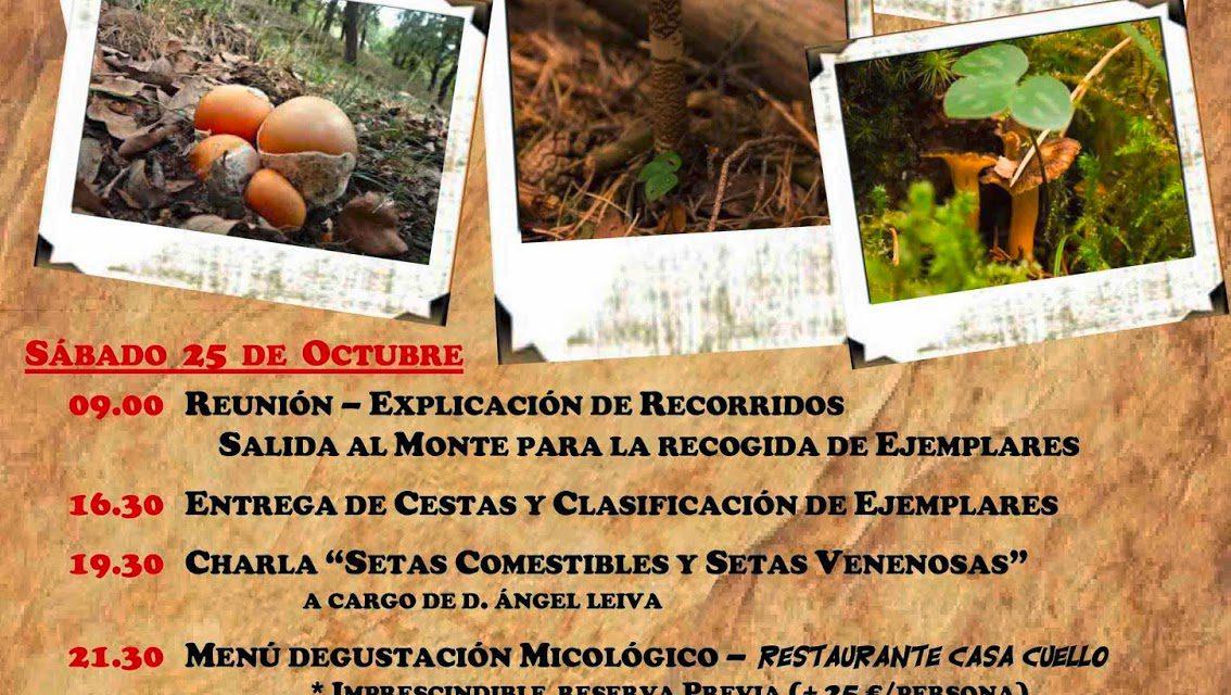 Jornadas micológicas en Morillo de Tou (días 25 y 26)