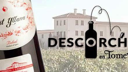 Degustación de vino (viernes, 31)