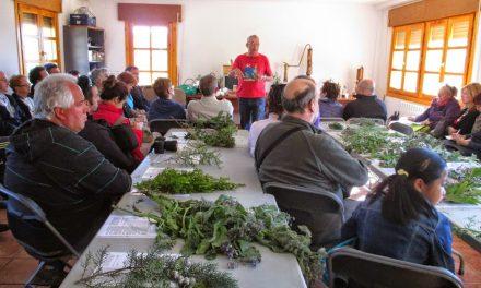 Ruta del madroño y de las plantas medicinales (sábado, 8)