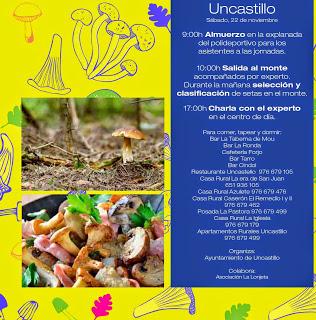 Jornadas micologicas Cinco Villas en Uncastillo (sábado, 22)