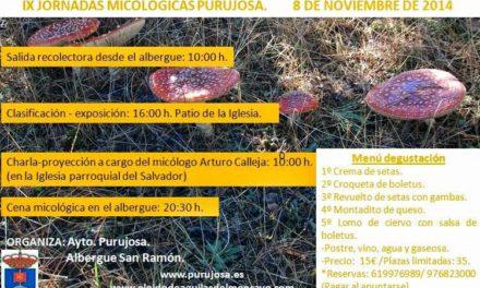 Jornada micológica (sábado, 8)