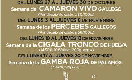 Gourmet Days en Tragantúa y Cabezudos con cigala (del 10 al 13)
