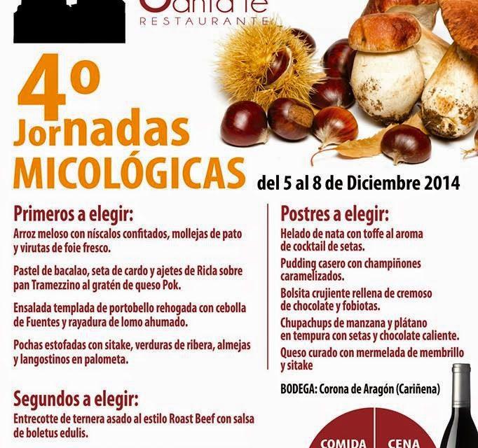Jornadas micológicas(del 5 al 8 de diciembre)