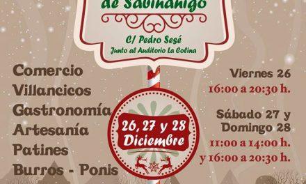 Mercado navideño (del 26 al 28)