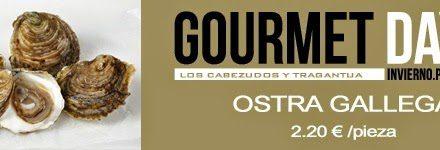 Vuelven los Gourmet Days en Tragantúa y Cabezudos con ostra gallega (del 26 al 29)
