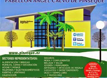 Expo Pinseque (del 6 al 8 de marzo)