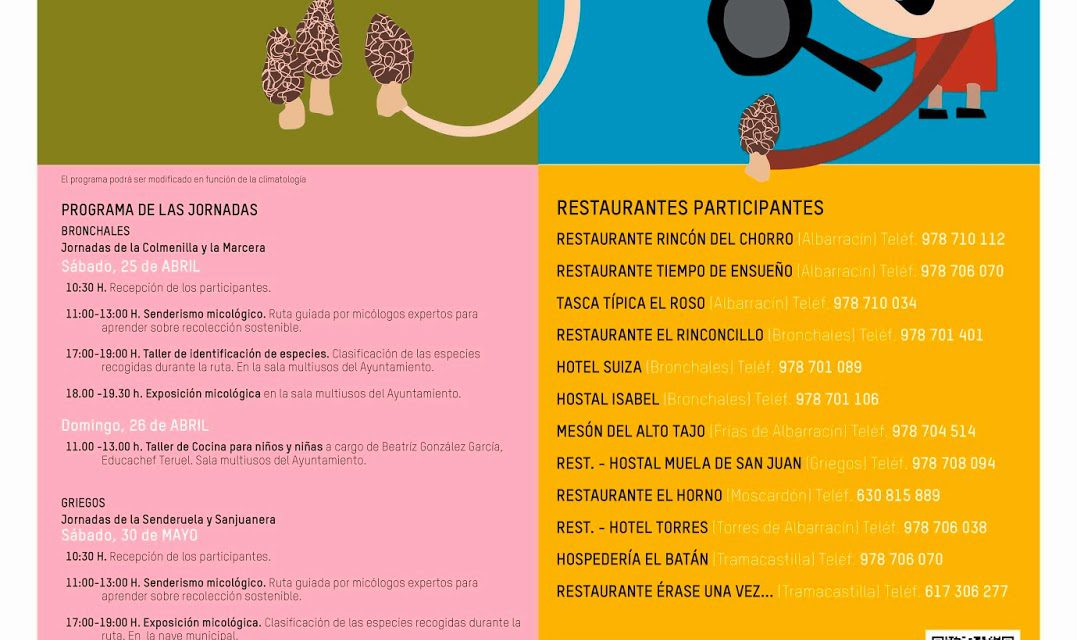 Jornadas micológicas de la Sierra de Albarracín (del 1 al 3 y los días 30-31 de mayo)