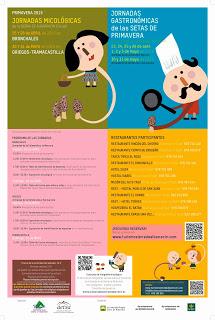 Jornadas micológicas de la Sierra de Albarracín (30 y 31 de mayo)