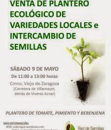 Venta de plantero ecológico de variedades locales en Zaragoza (sábado, 9)