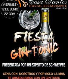 ALBALATE DE CINCA. Fiesta gin-tonic (viernes, 12)