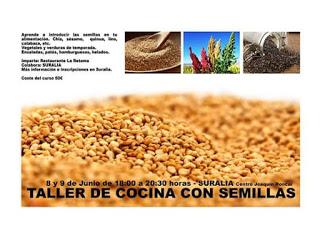 Taller de cocina con semillas (días 8 y 9)