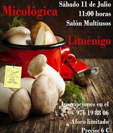 LITUÉNIGO. II Taller de cocina micológica (sábado, 11)