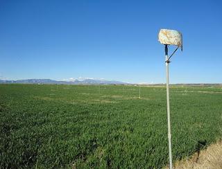 Politicas agrarias y de desarrollo rural. TTIP (jueves, 30)